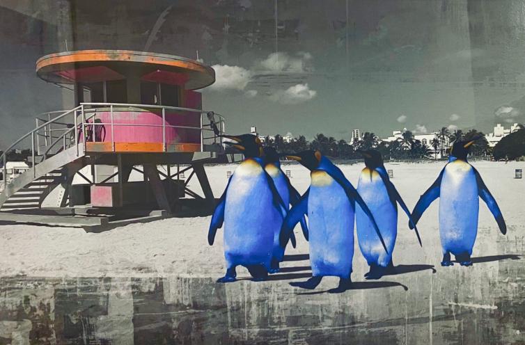 Penguin holiday